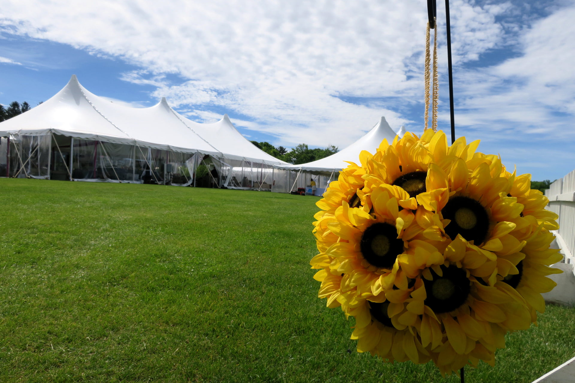 venues-interest-polo-sunflower